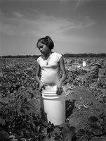 Farmworkerchild