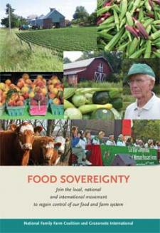 FS-Booklet-Cover-2010