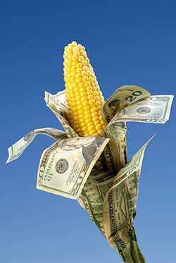 Corn_with_dollars
