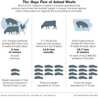Animalwaste
